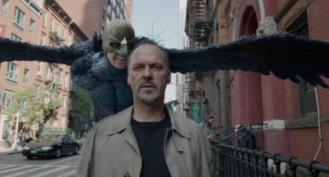 """Birdman"" seems to have soared to the top of most of the categories."